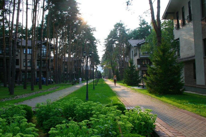 Жители микрорайона «Сосны» в Троицке ТиНАО хотят отделиться от города, фото-6