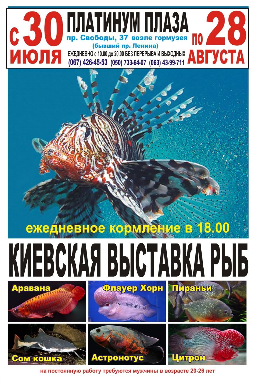 Vistavka_Ryb_2016 (2)