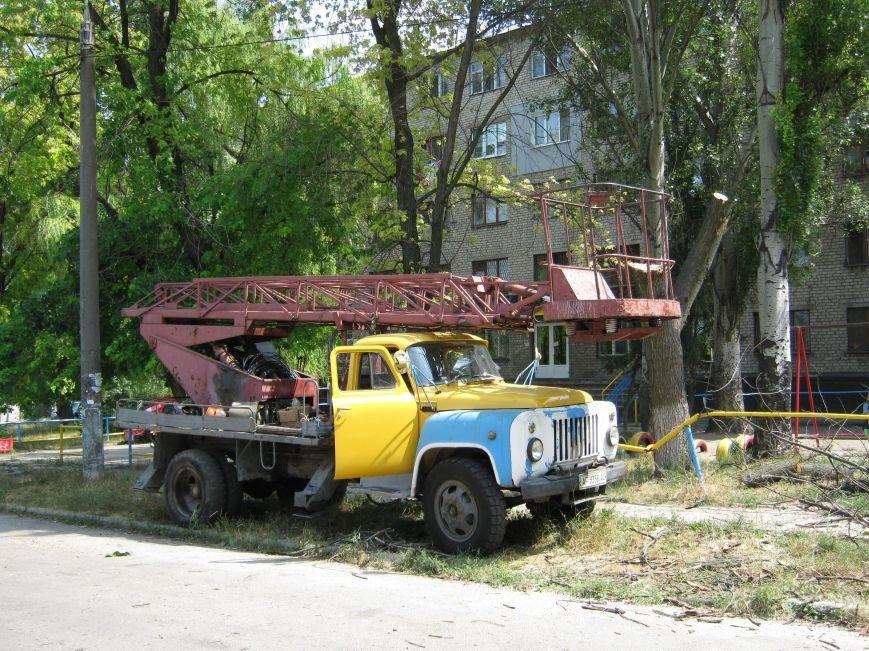 Запорожские коммунальщики убрали дерево, которое рухнуло возле детской площадки, фото-1