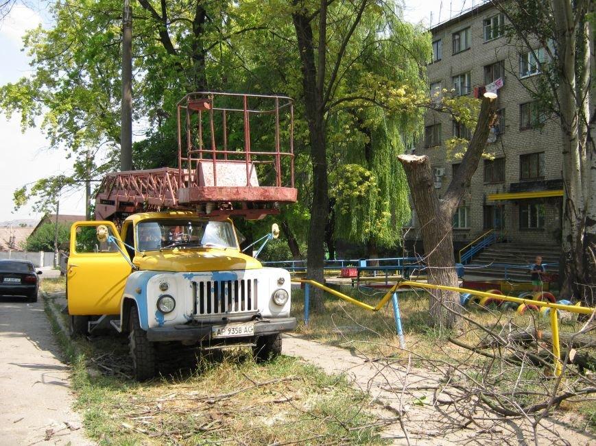 Запорожские коммунальщики убрали дерево, которое рухнуло возле детской площадки, фото-2