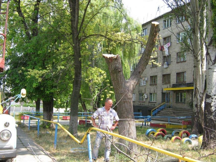 Запорожские коммунальщики убрали дерево, которое рухнуло возле детской площадки, фото-3