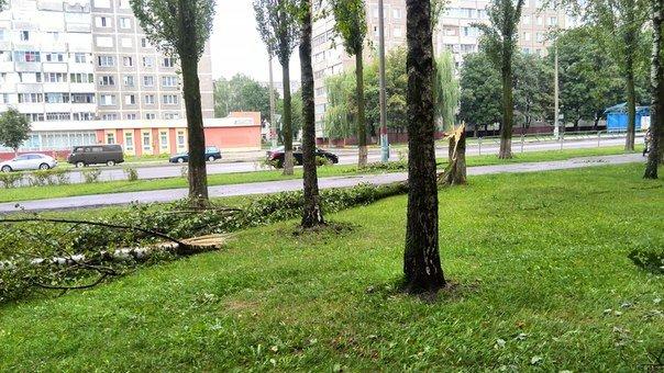 дождь гомель5