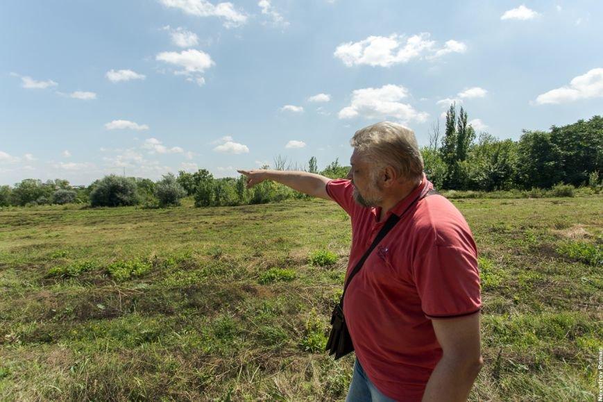 Александр Водяник: Ростов - это большая мозаика, фото-2