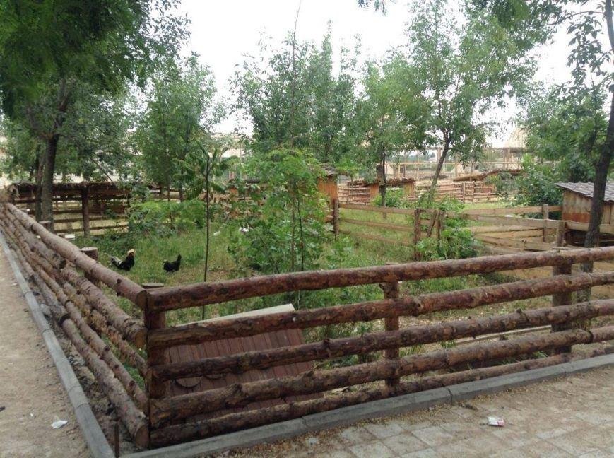 В Мариуполе хозяину зоопарка дали землю под озеленение (ФОТО, ВИДЕО), фото-4