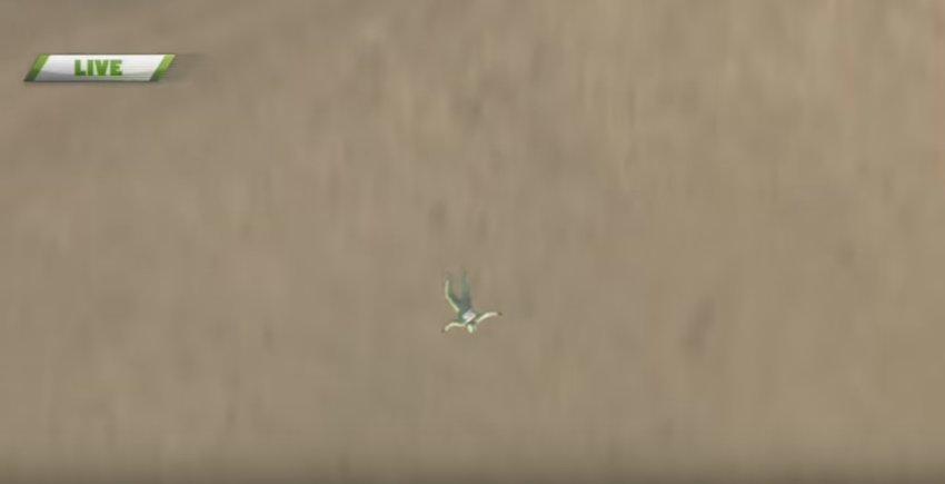 Американець першим у світі здійснив стрибок з літака без парашута з висоти 7,6 тисяч метрів: фото, відео, фото-1