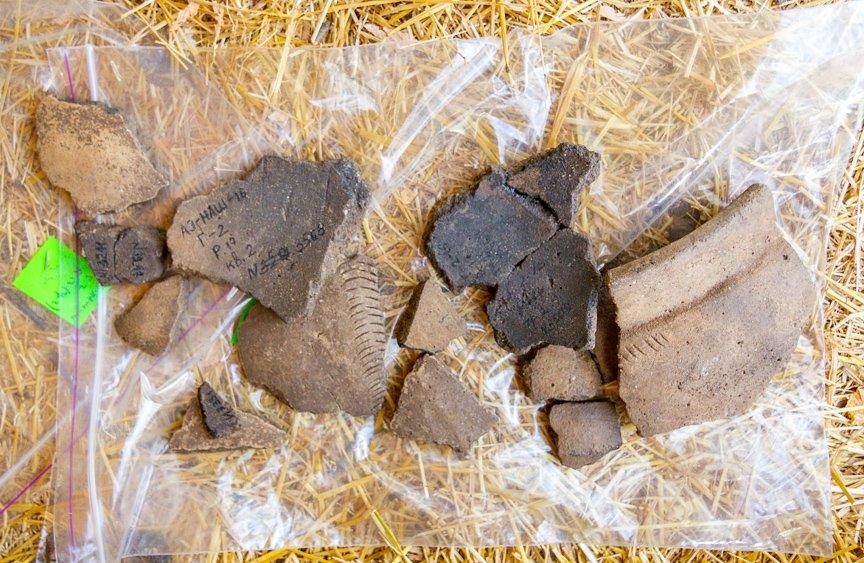 На Хортице проводят раскопки древнего культового комплекса, - ФОТОРЕПОРТАЖ, фото-15