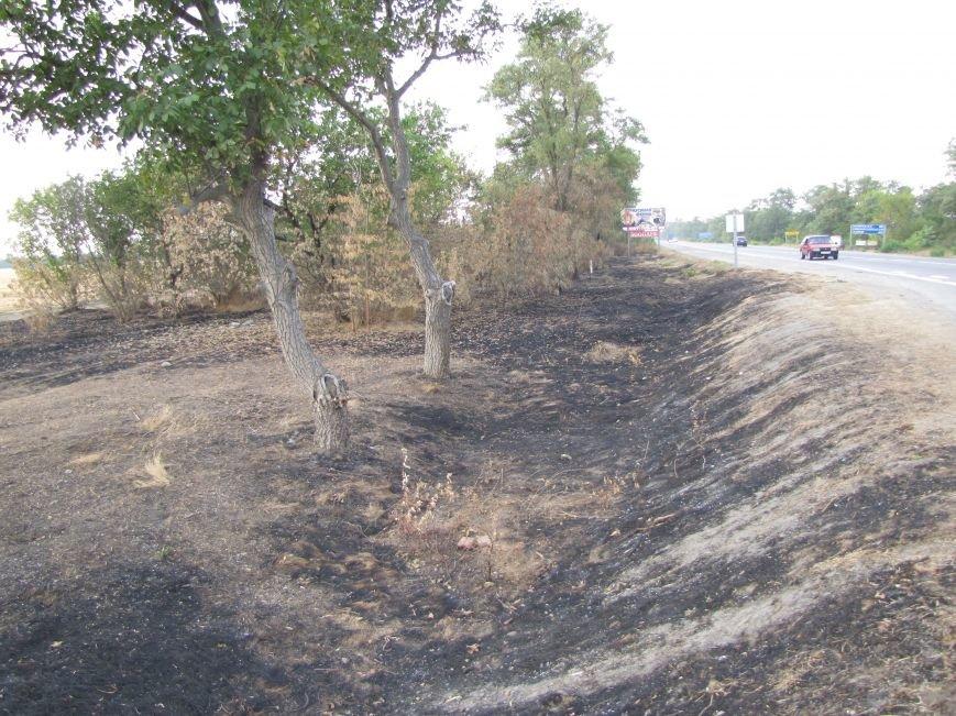 Массовые очаги пожаров в Мелитопольском районе, фото-1