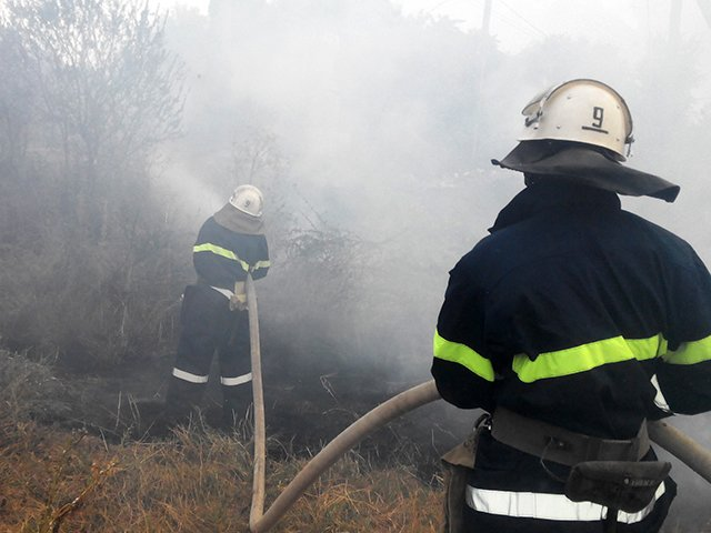 В Николаевской области участились пожары (ФОТО), фото-2