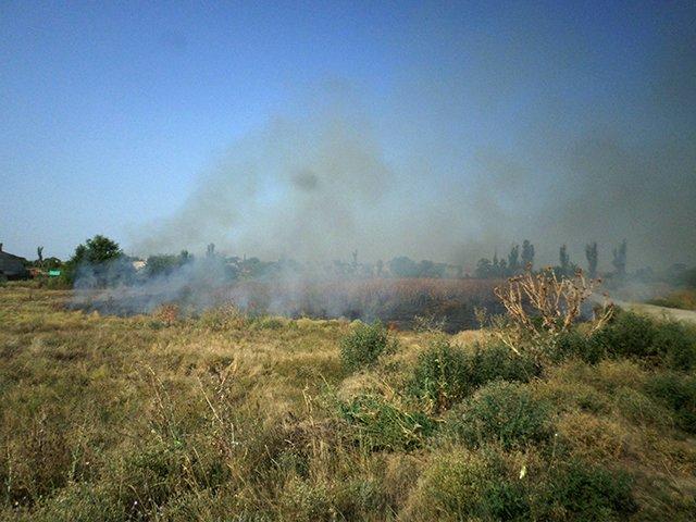 В Николаевской области участились пожары (ФОТО), фото-1