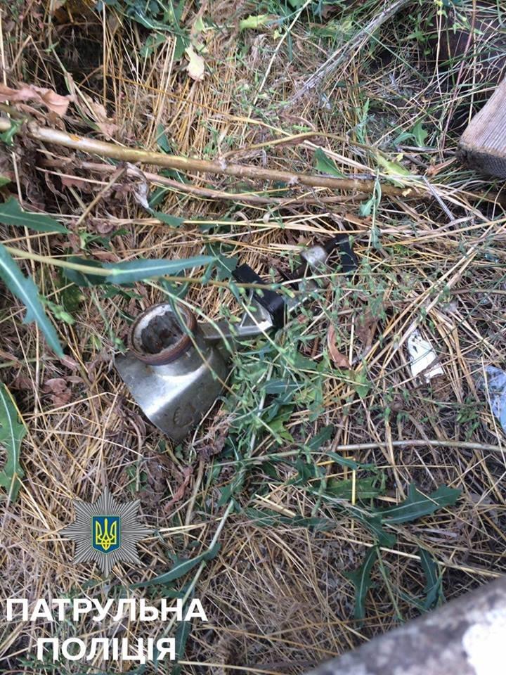 В Кропивницком патрульные поймали женщину, проникнувшую в дачный дом, фото-3