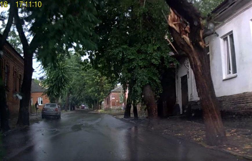 Вчера в Кропивницком непогода ломала деревья и ветки. ФОТО, фото-3