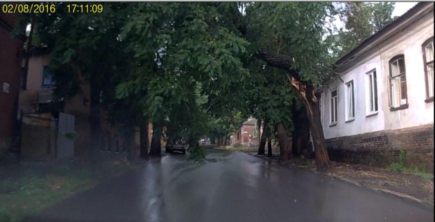 Вчера в Кропивницком непогода ломала деревья и ветки. ФОТО, фото-1