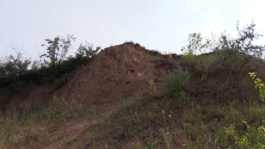 В Донецкой области обнаружены останки доисторического мамонта  (ФОТО), фото-1