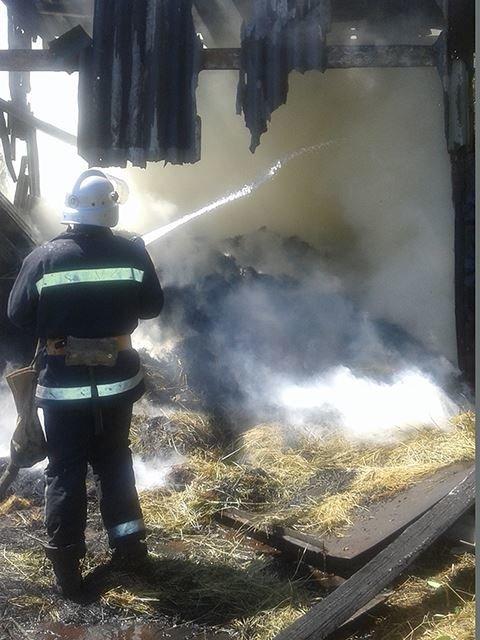 На Николаевщине сгорел сеновал (ФОТО), фото-1