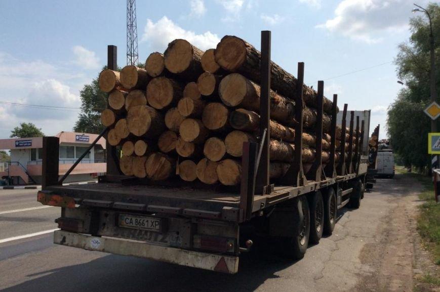 В Черниговской области активисты задержали два грузовика «лесной мафии», фото-3