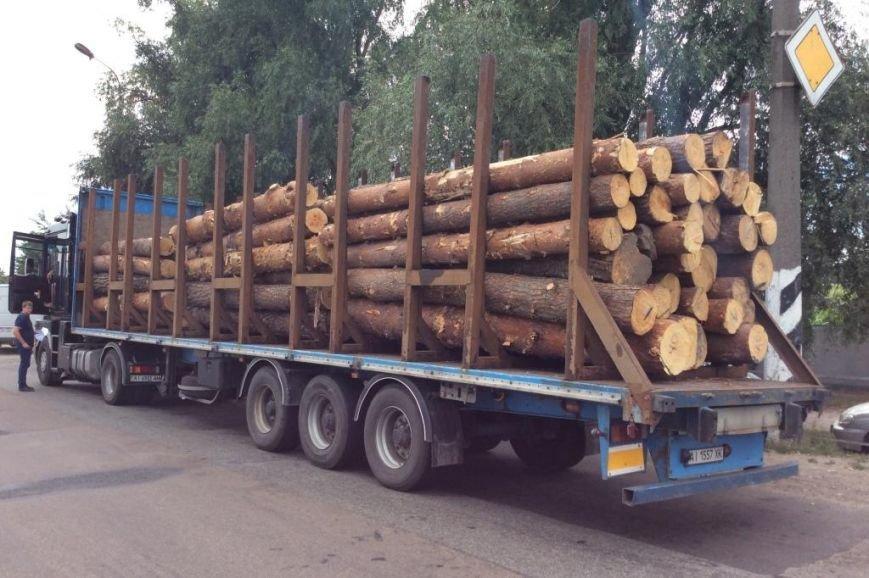 В Черниговской области активисты задержали два грузовика «лесной мафии», фото-4