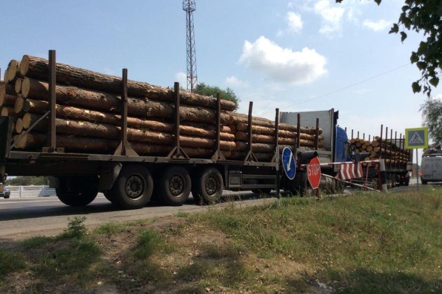В Черниговской области активисты задержали два грузовика «лесной мафии», фото-2
