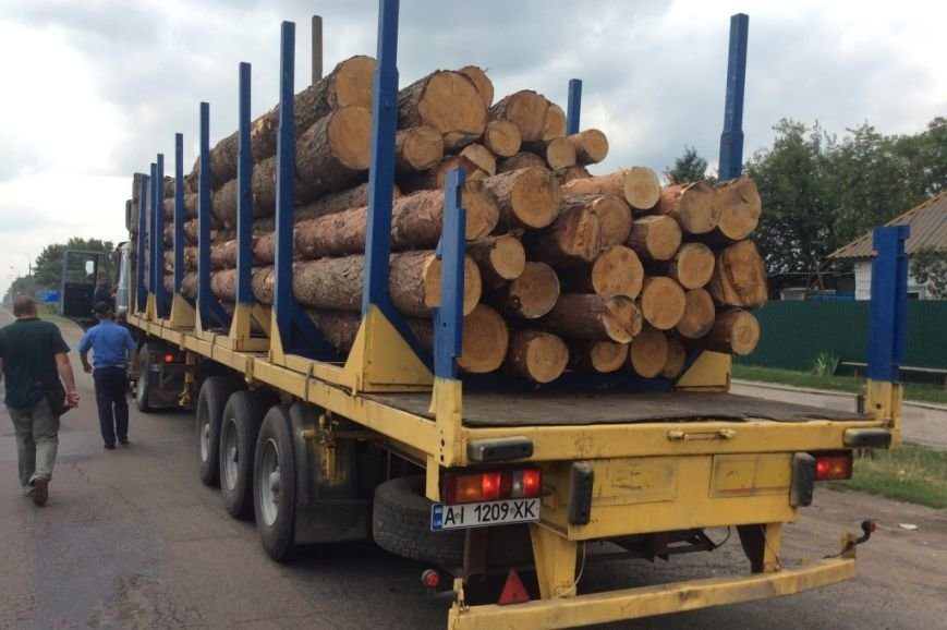 В Черниговской области активисты задержали два грузовика «лесной мафии», фото-1