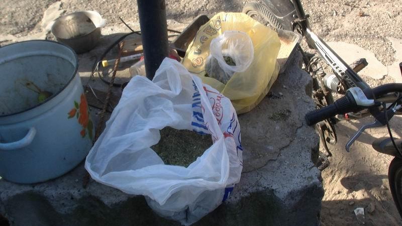 В Славянском районе арестовали наркоагрария, фото-3