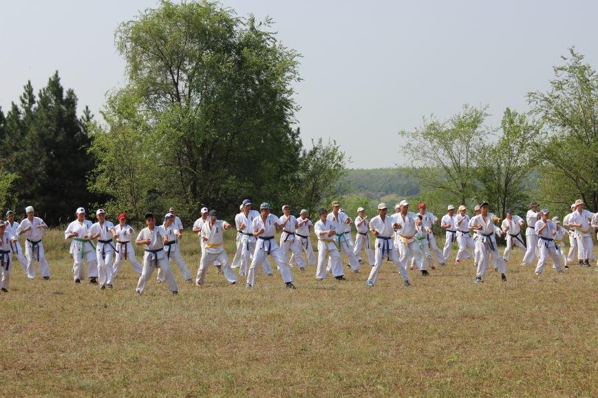 Мелитопольские каратисты показали свое мастерство в летней школе, фото-2