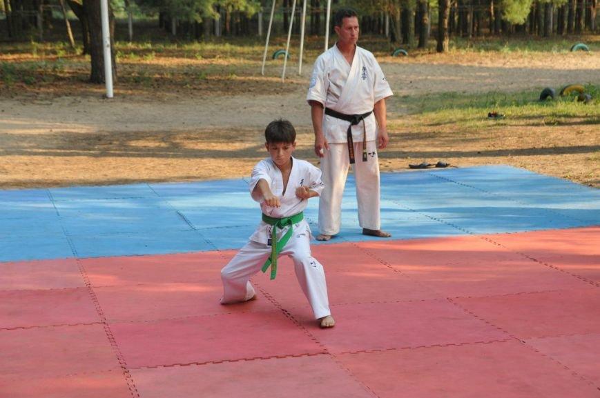 Мелитопольские каратисты показали свое мастерство в летней школе, фото-6