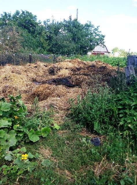 У Новоград-Волинському районі пожежа знищила 8 тонн грубих кормів, фото-1