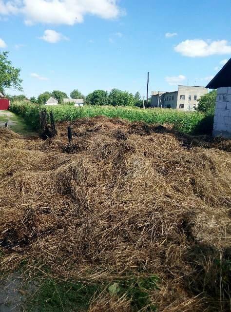 У Новоград-Волинському районі пожежа знищила 8 тонн грубих кормів, фото-2