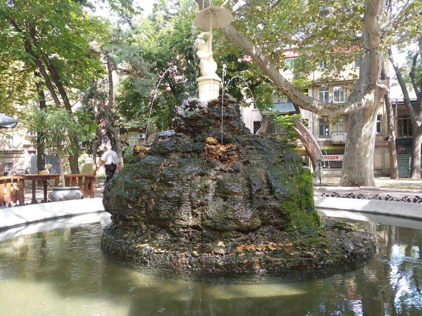 В Одесском фонтане поселились черепаха и рыбы (ФОТОФАКТ), фото-2