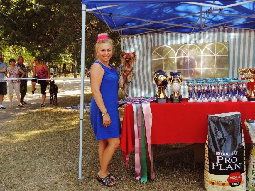 Породистые собаки из Мариуполя стали чемпионами Молдовы (ФОТО), фото-2