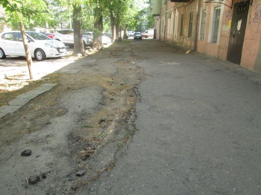 В центре Одессы городские власти не заметили разбитый квартал (ФОТО), фото-5