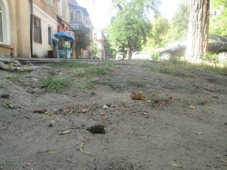 В центре Одессы городские власти не заметили разбитый квартал (ФОТО), фото-7