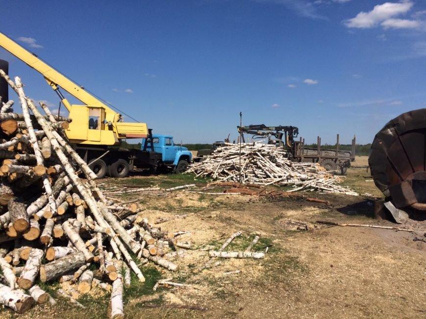 В Ємільчинському районі демонтували незаконні бочки для випалювання деревного вугілля, фото-3