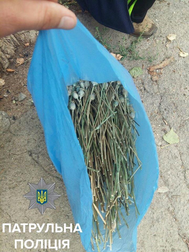 В Кропивницком патрульные поймали мужчину с полным пакетом маковой соломки (ФОТО), фото-2
