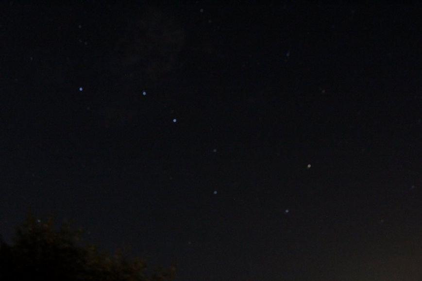 Мелитопольцы поймали «звездный дождь», фото-2