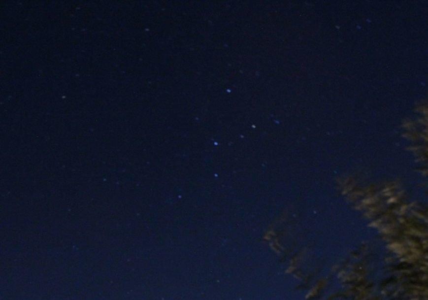 Мелитопольцы поймали «звездный дождь», фото-3
