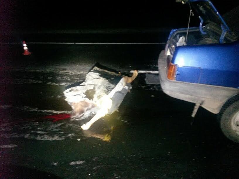 Под Мариуполем автомобиль врезался в тягач с военной техникой. Погибла женщина и ребенок (ФОТО, 18+, ДОПОЛНЕНО, ВИДЕО), фото-3