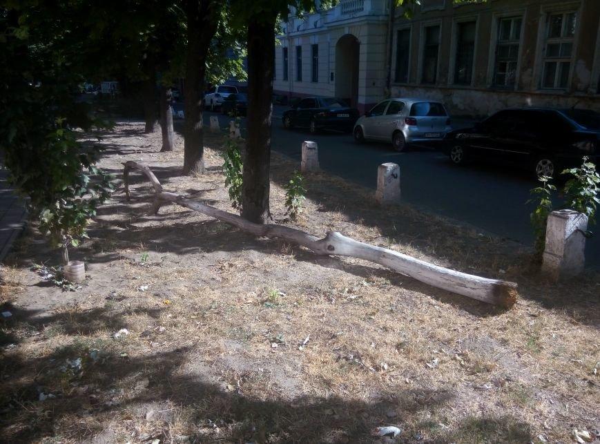 В центре Одессы вандалы поломали памятник Малиновскому (ФОТО), фото-4