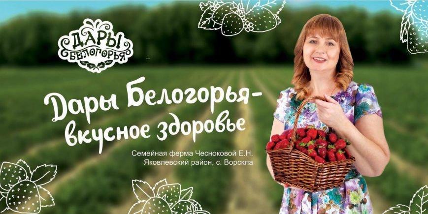 На белгородских дорогах появилась «фермерская» социальная реклама, фото-4