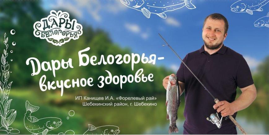 На белгородских дорогах появилась «фермерская» социальная реклама, фото-1