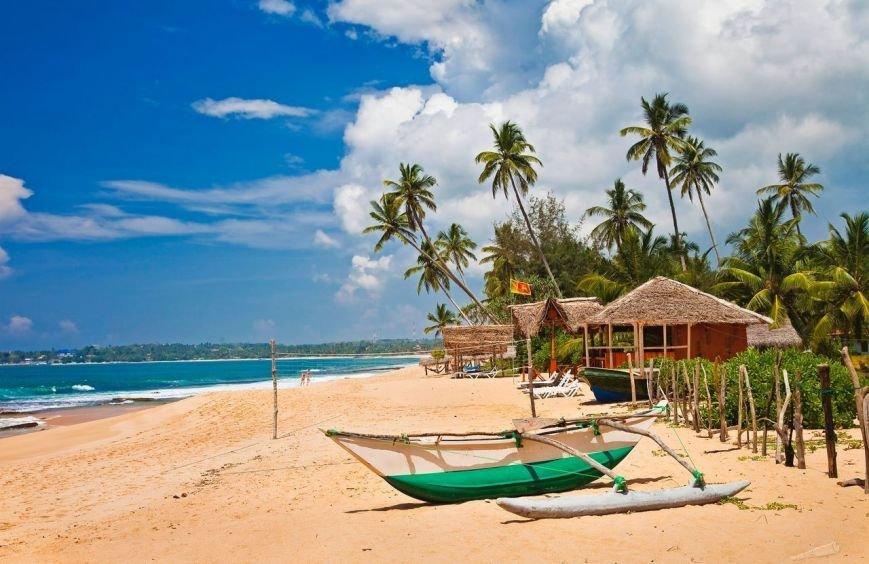 Манящий зов экзотики: сказочный отпуск на Шри-Ланке, фото-1
