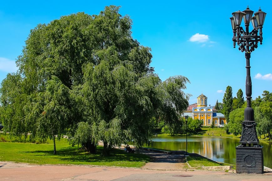 Город зеленого цвета, фото-3
