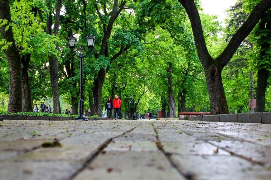 Город зеленого цвета, фото-2
