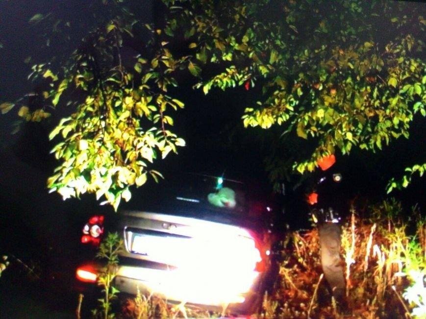 """В Кривом Роге пьяный подросток на отцовской """"Ладе"""" пытался скрыться от полиции, запутался в кустах и заперся в машине (ФОТО), фото-2"""