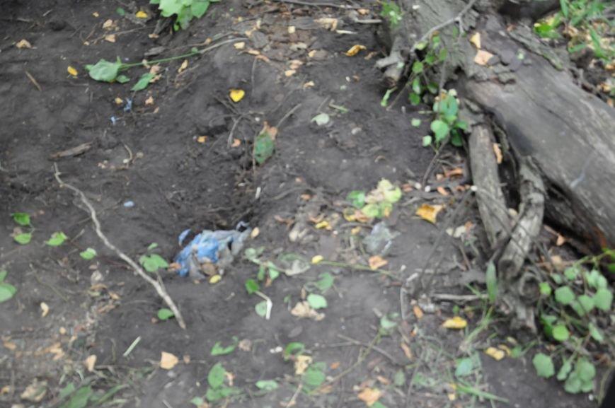 На околиці Житомира СБУ і Нацполіція виявили схрон із гранатами та набоями, фото-1
