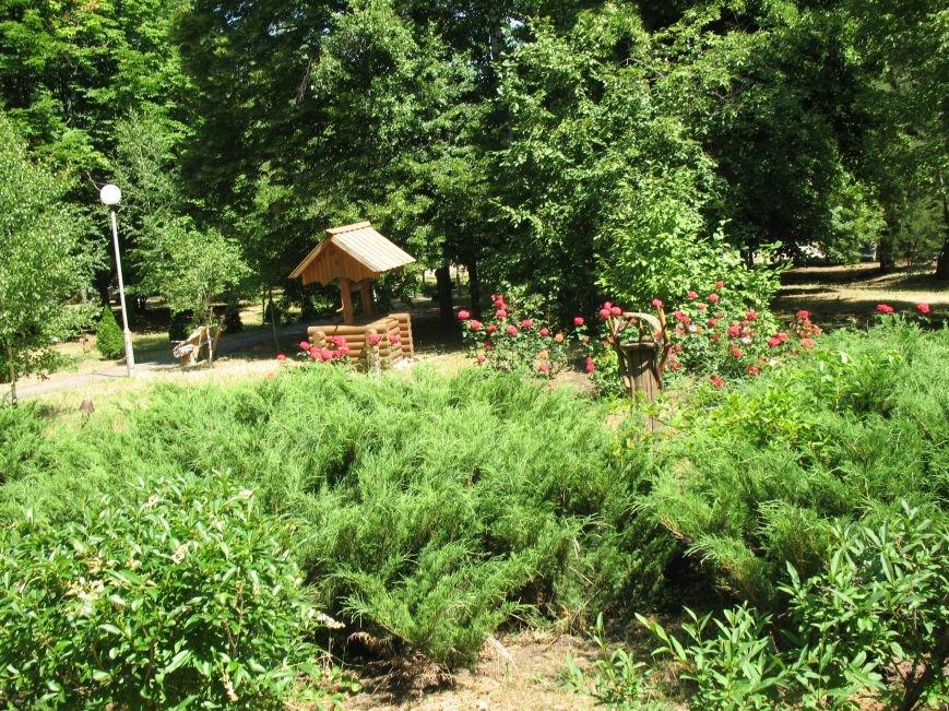 Для переселенцев на базе отдыха  «Серебряная пуща» организован оздоровительный отдых, фото-2