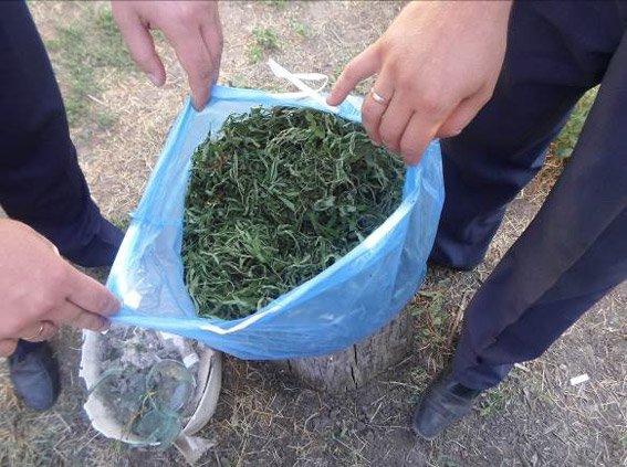 У жителя Снигиревки изъяли больше килограмма каннабиса и конопли (ФОТО), фото-3
