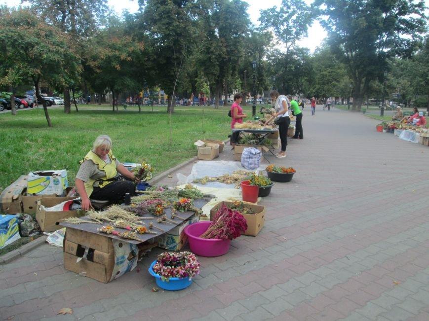 Сегодня в Одессе родноверы празднуют Яблочный спас, а православные – Преображение Господне (ФОТО), фото-13