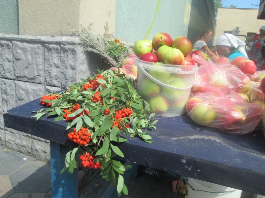 Сегодня в Одессе родноверы празднуют Яблочный спас, а православные – Преображение Господне (ФОТО), фото-6