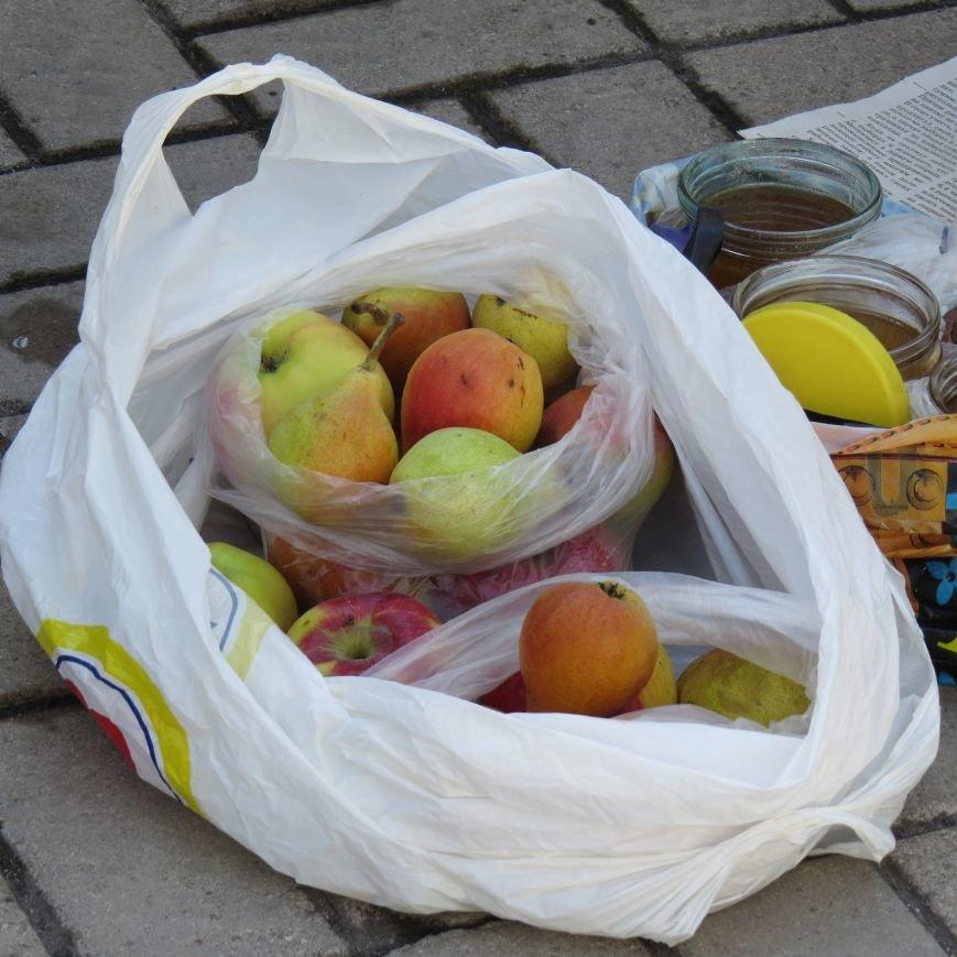 Яблочный день (ФОТОПЯТНИЦА), фото-8