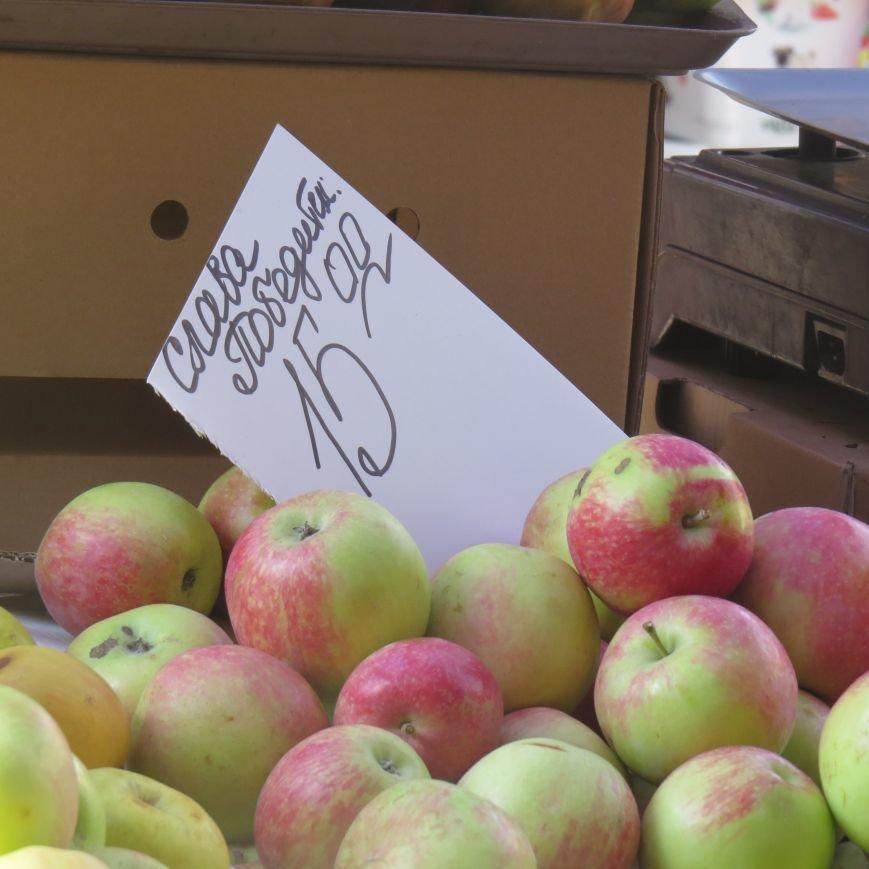 Яблочный день (ФОТОПЯТНИЦА), фото-41